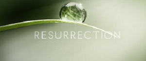 Resurrection_2013_logo